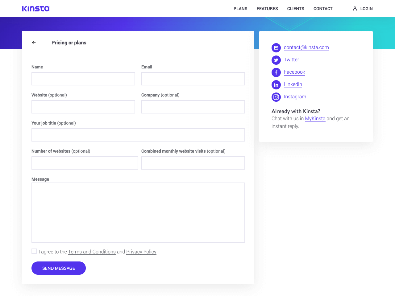 Kinsta form example