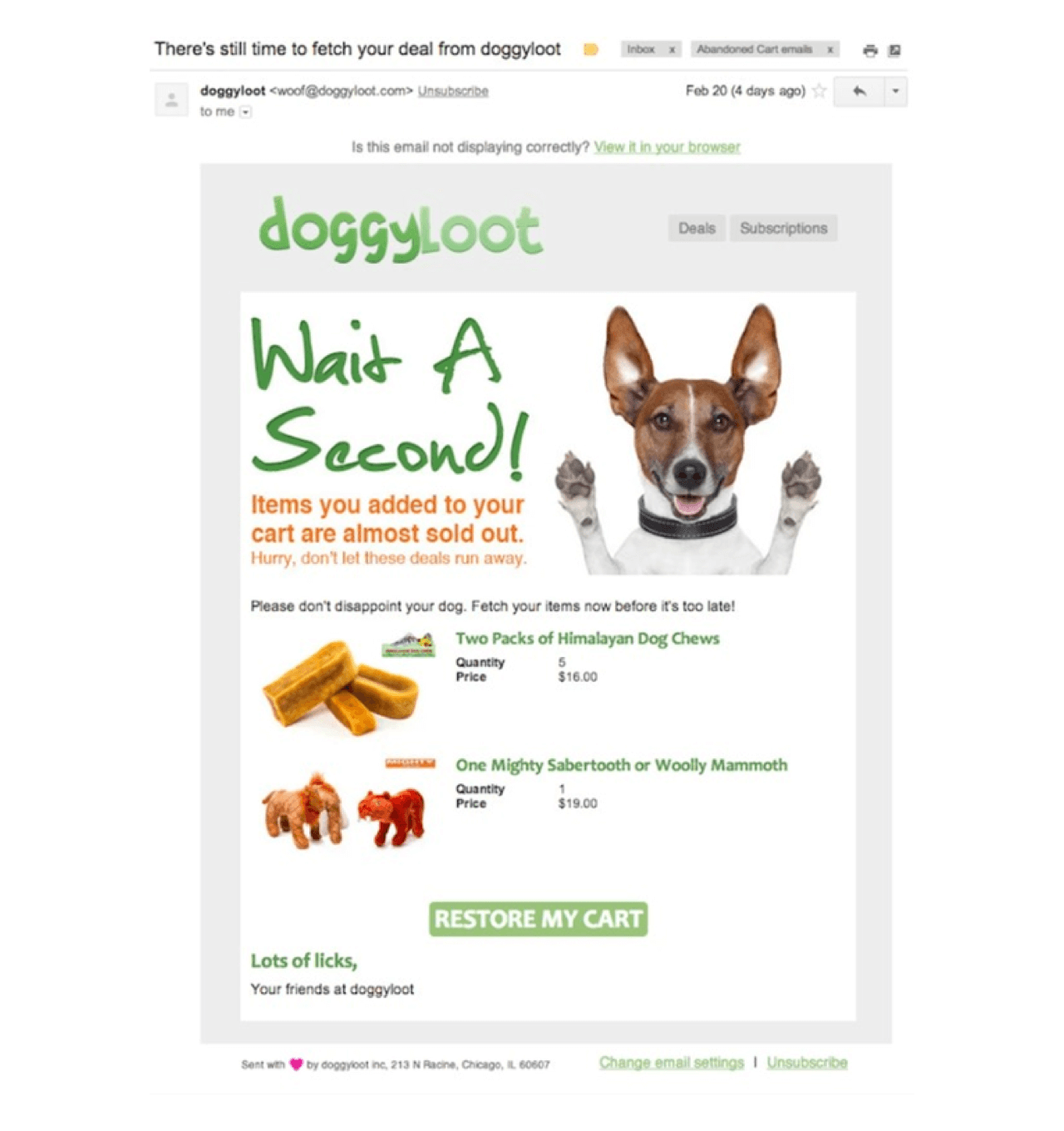 DoggyLoof abandoned cart email is clever and right in line with brand voice