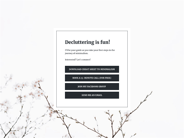 Create a pop-up landing page and link to it directly from your Instagram bio
