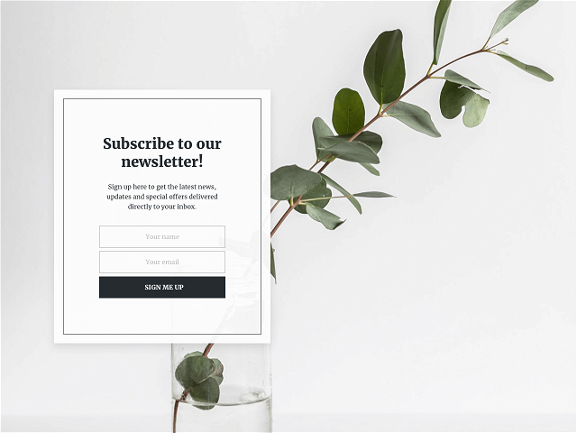 Build an email list by inviting your social media followers to subscribe