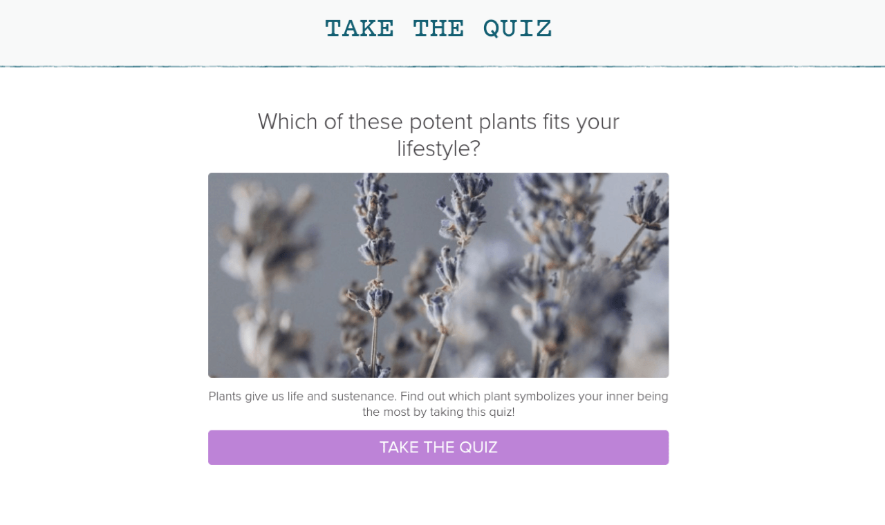 Quizzes are an excellent way to capture emails on a website