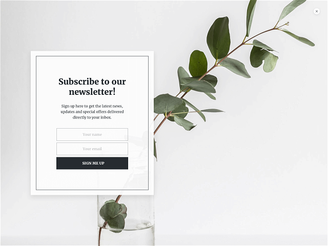 Fullscreen email subscription form with an Unsplash image in the background