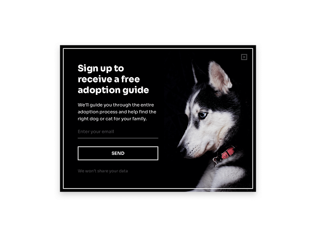 Email popup including a microcopy